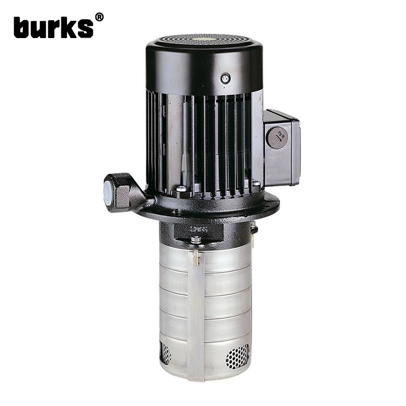The burks BKS1-2-4 series special hydraulic pump for machine tool
